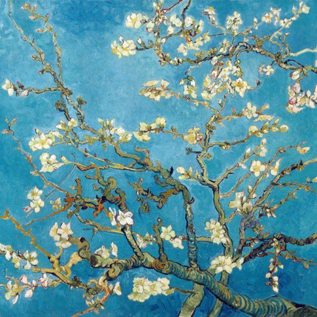 van Gogh almond-blossom